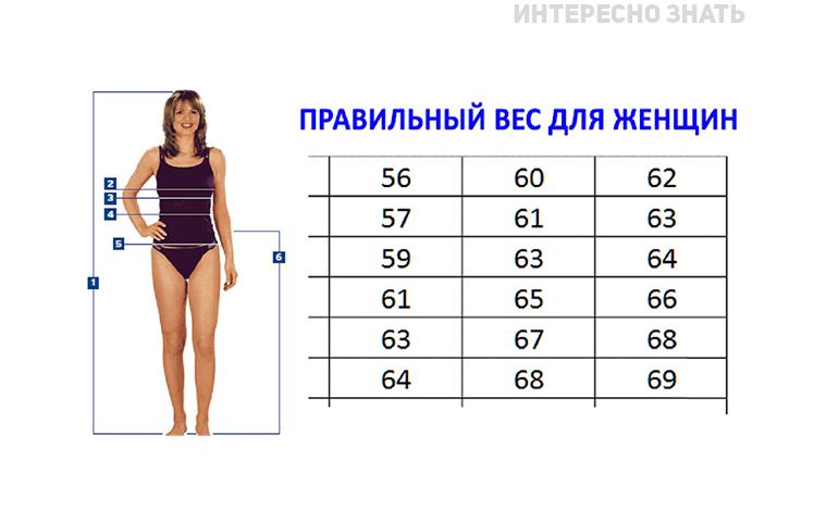 Рост 168 вес 65 девушки в очках на работе