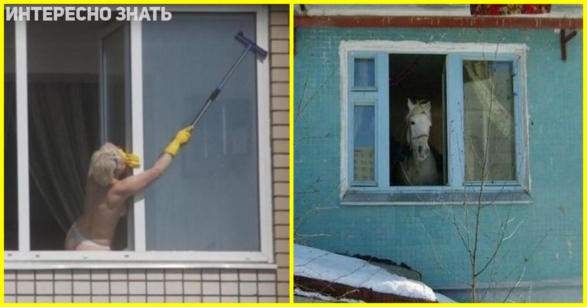 Фотки из окон соседнего дома девушка