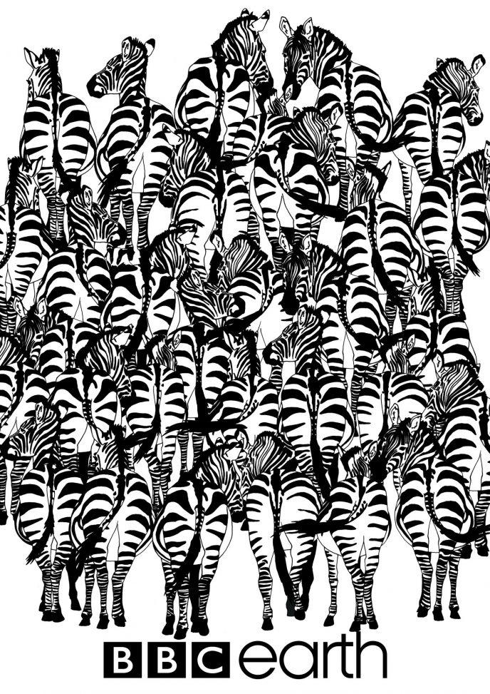 Травоядные животные - Nature | 973x688