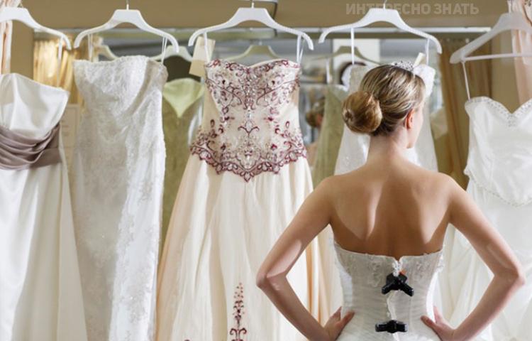 Как выбрать цветовую палитру для свадьбы: важные 45